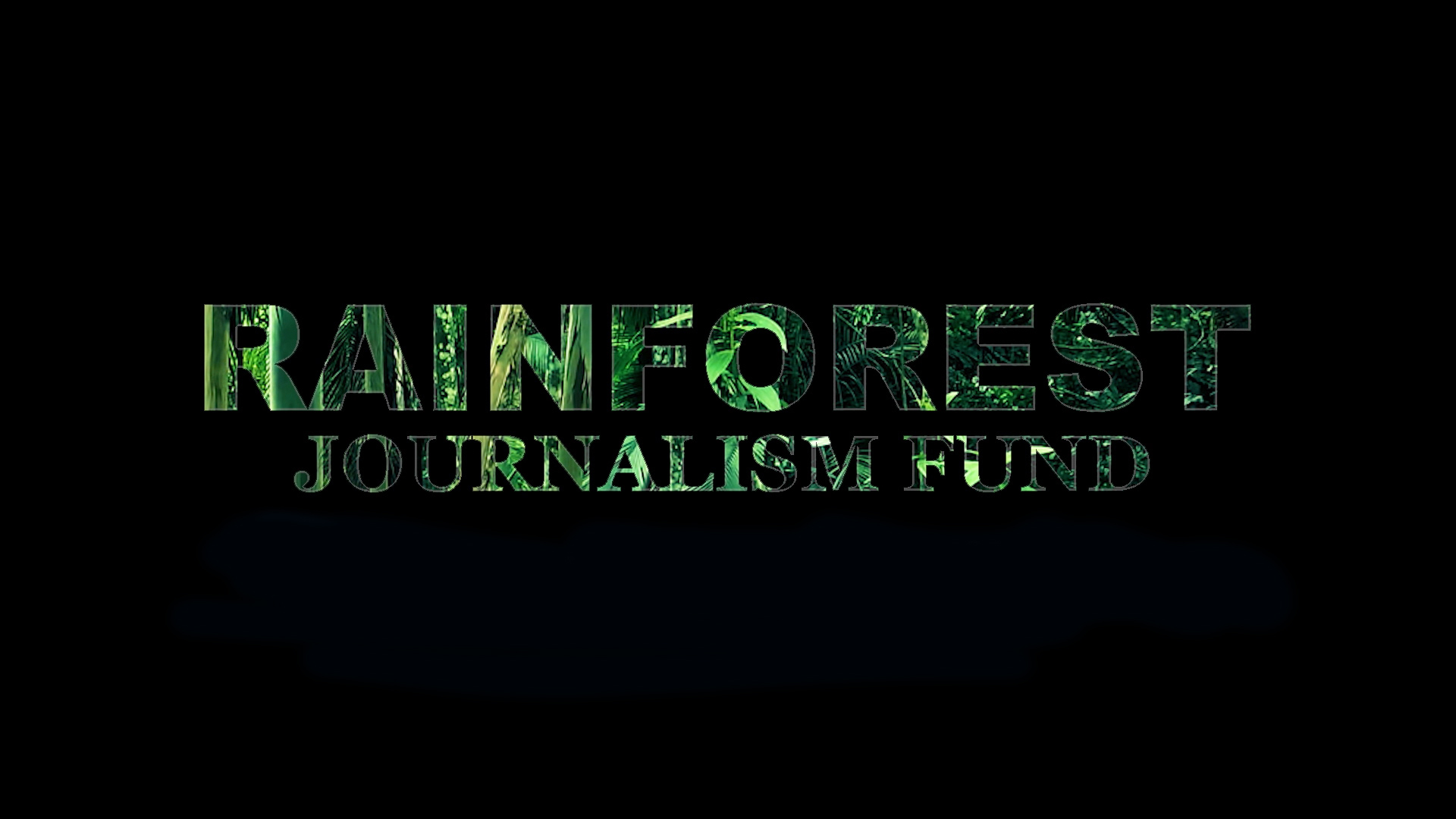 Rainforest Journalism Fund Call for Proposals—Local and Regional ...