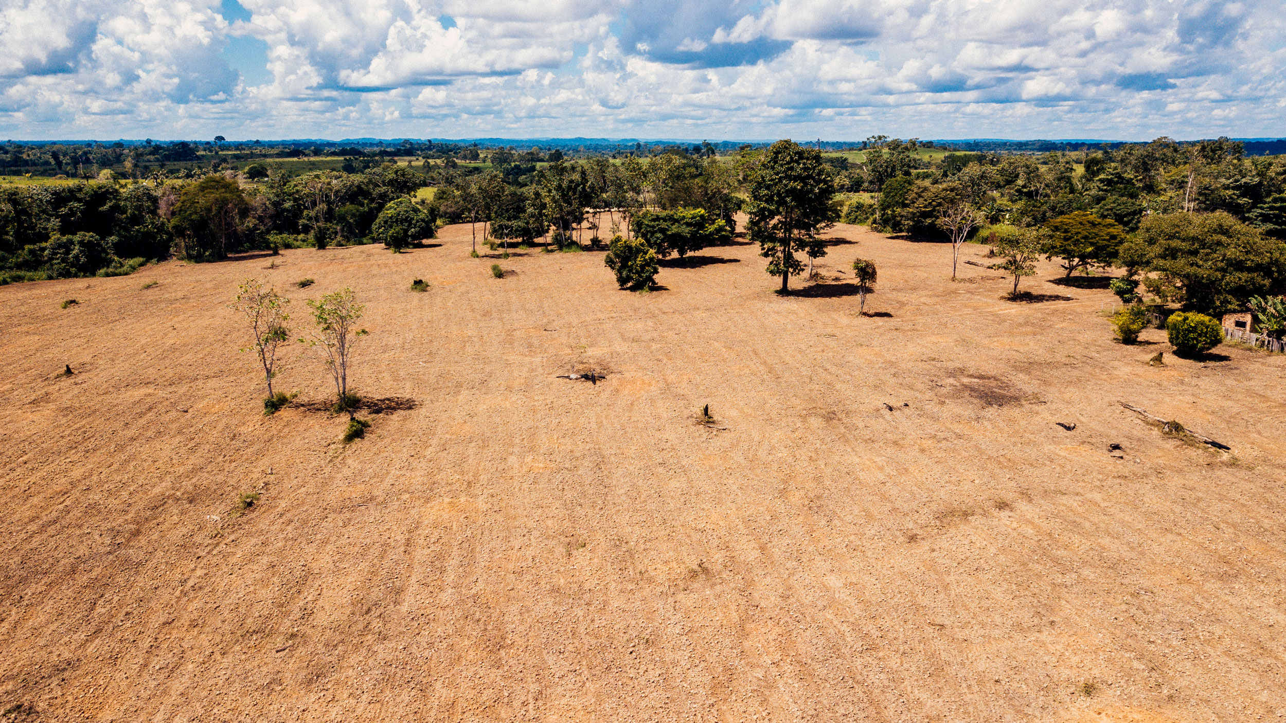 The Carbon Offset Market: Leveraging Forest Carbon's Value in the Brazilian Amazon
