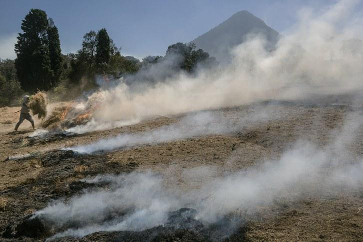 A worker burns the land as preparation for the next onion harvest, near the city of Quetzaltenango. With less tree cover, the effects of oscillating temperatures have worsened, making it more difficult for farmers to recoup losses. Image by Mauricio Lima. Guatemala, 2019.