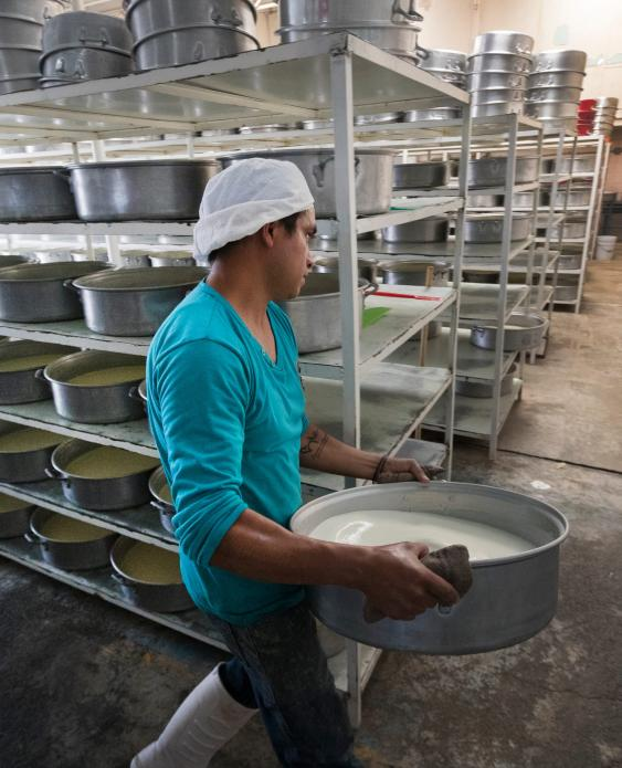 Workers carry tubs of milk that will be processed into cream at a small dairy plant owned by Alvaro Gonzalez and his brother in Tizayuca, Mexico. The business employs 15 people who make cream and yogurt. Image by Mark Hoffman. Mexico, 2019.