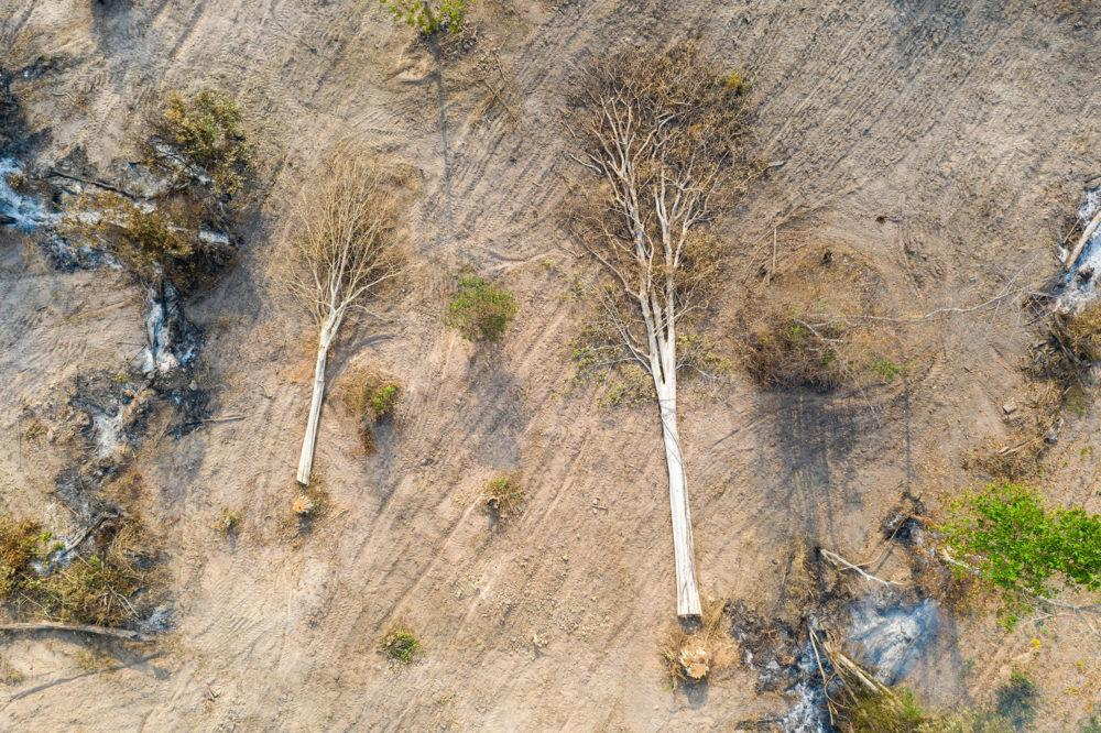 Aerial view of cut trees in the Beng Per Wildlife Sanctuary. Image by Sean Gallagher. Cambodia, 2020.<br />