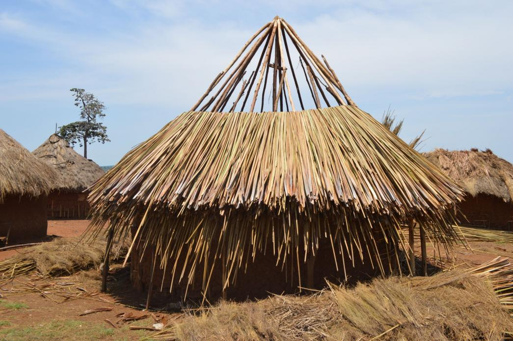 A grass-thatched house being completed in Walumbe village. According to Busoga Forestry Company, no permanent structures are allowed in the forest reserve. Image by Annika McGinnis. Uganda, 2019. </p> <p>