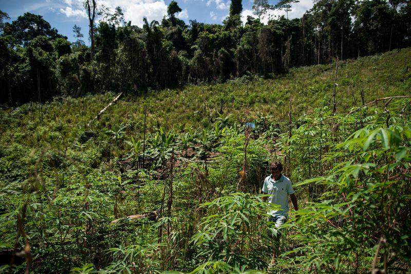 Elias da Silva Lima, 63, walks through a clearing in the forest he farms on the Virola Jatoba settlement in Anapu. Image by Spenser Heaps. Brazil, 2019.