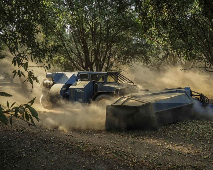 Machines crawl through the plots of almond trees, shaking each one to force the almonds to drop. Image by Larry C. Price. California, 2018.