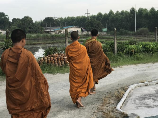 Three monks. Image by Kiley Price. Thailand, 2018.