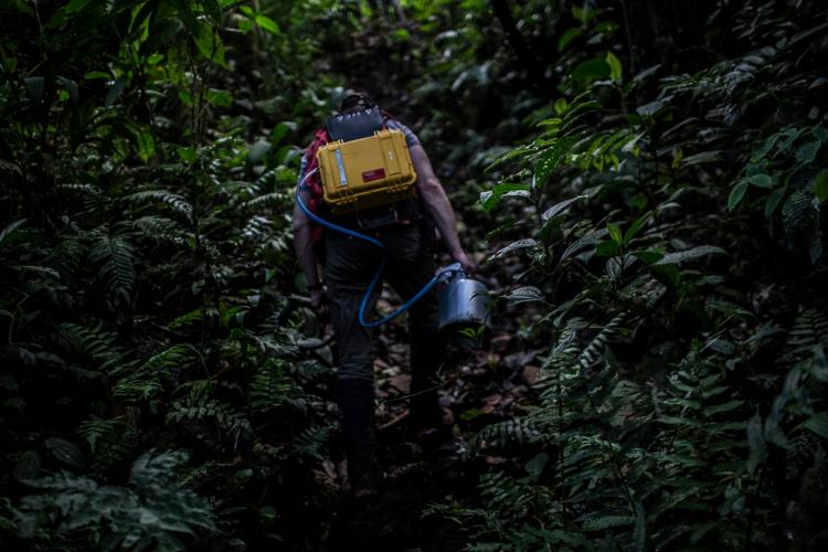 Volcanologist Chad Deering walks through the tropical rainforest with a gas-testing kit. Image by Dado Galdieri / Hilaea Media. Costa Rica, 2020.