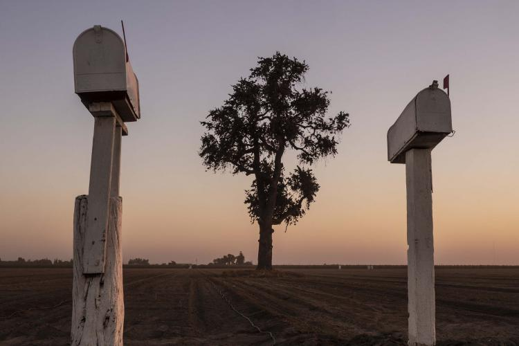 Stretching 250 miles from Bakersfield in the south to Stockton in the north, the San Joaquin comprises the southern two-thirds of the storied Central Valley, a plowed-over promised land that generates more than $17 billion a year in crops. Image by Larry C. Price. California, 2018.