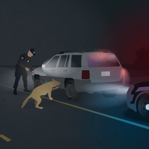 The officer asks for consent to search. If the driver doesn't grant permission to search, the officer calls in a drug-sniffing dog. If the dog signals on drug scents, a search is allowed without the driver's consent and with no warrant obtained. Image by David Kovaluk. 2019.