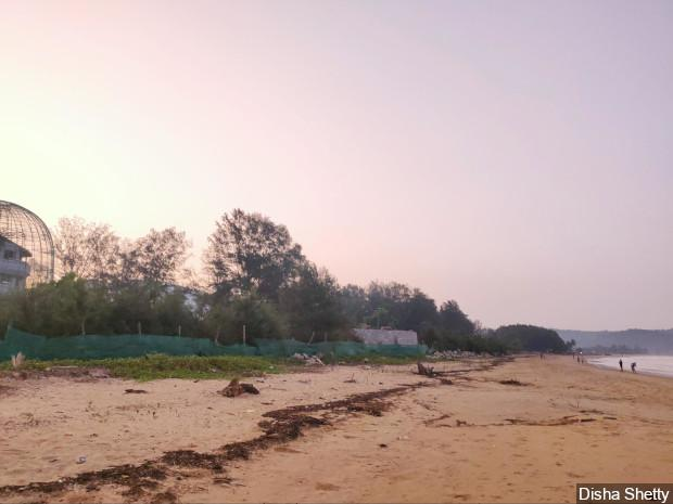 A garden (on the left) and other structures have been built on the ecologically sensitive Karwar beach. The beach is a nesting ground for local sea turtles as well as the olive ridley turtles, and these structures get in the way, according to local scientists. Image by Disha Shetty / IndiaSpend. India, 2020.