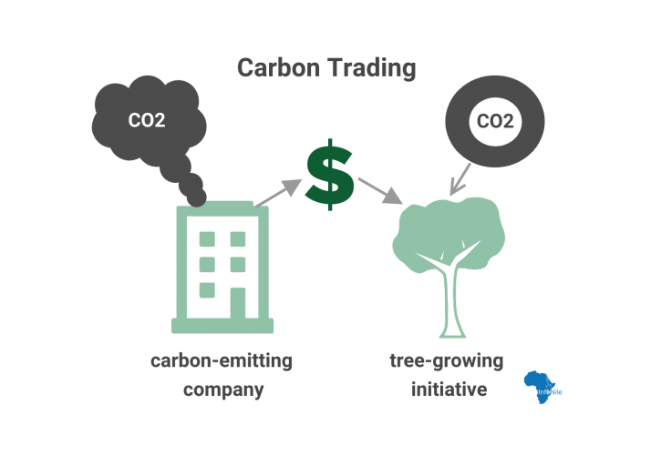 Under the international REDD+ strategy to fight climate change, carbon-emitting companies can buy carbon credits from tree-growing initiatives to 'offset' their negative environmental impact. Image by Annika McGinnis.