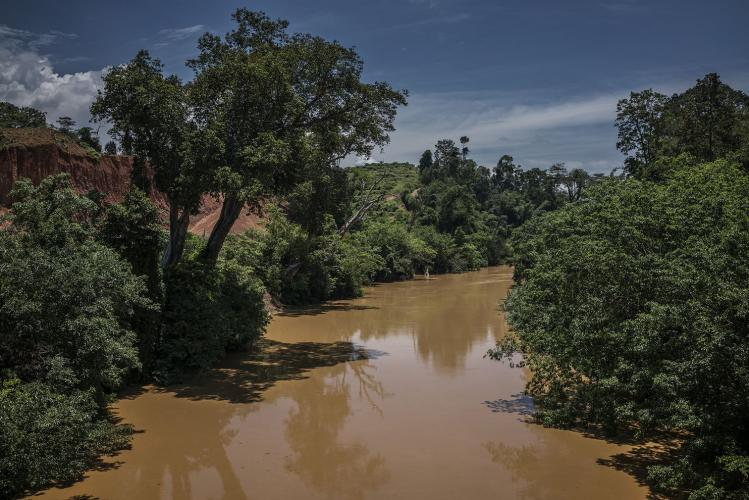 The Lebir River is choked with sediment from the undersoil, indicating it is anaerobic. This was the heart of the Batek's territory. Kuala Koh sits upstream on a tributary. Image by James Whitlow Delano. Malaysia, 2019.