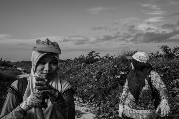 Plantation workers Supraetun and Asnia in a plantation in Kandis, a subdistrict of Riau. Image by Xyza Cruz Bacani. Indonesia, 2018.