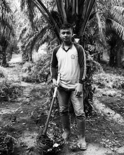 Puryito, 25, has worked on the plantation alongside his family since he was a teenager. Image by Xyza Cruz Bacani. Indonesia, 2018.