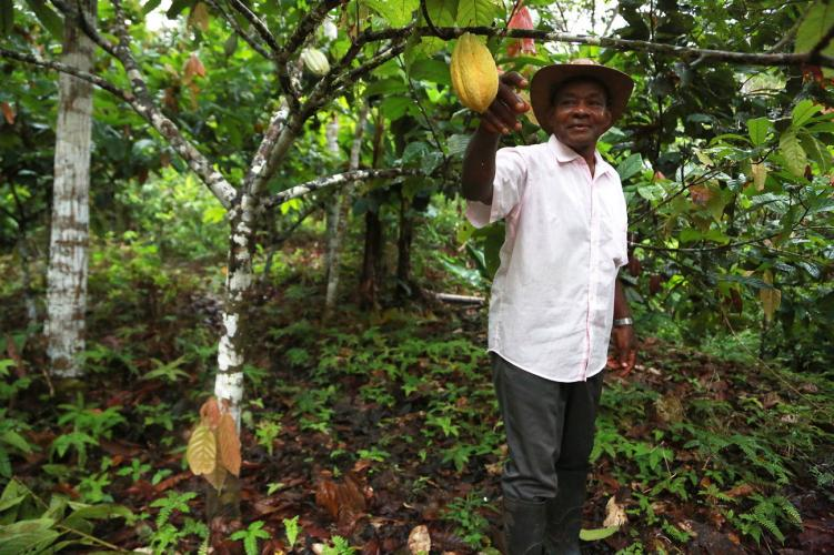 José Palacios stands by a cacao tree on his property in Guarandó, a small river community in the western Chocó department of Colombia. Image by Verónica Zaragovia. Colombia, 2018.